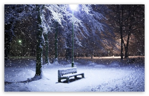 lone_bench_covered_in_snow-t2